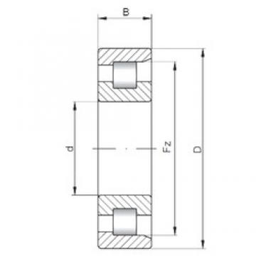 40 mm x 80 mm x 18 mm  Loyal NF208 E cylindrical roller bearings