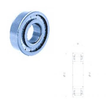 40 mm x 80 mm x 18 mm  Fersa NU208FMN cylindrical roller bearings